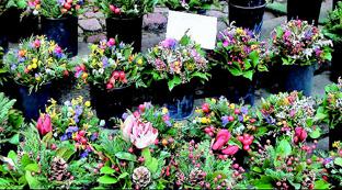 市場で売られている色鮮やかな花束
